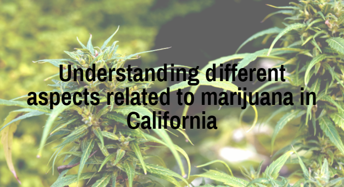 Understanding different aspects related to marijuana in California